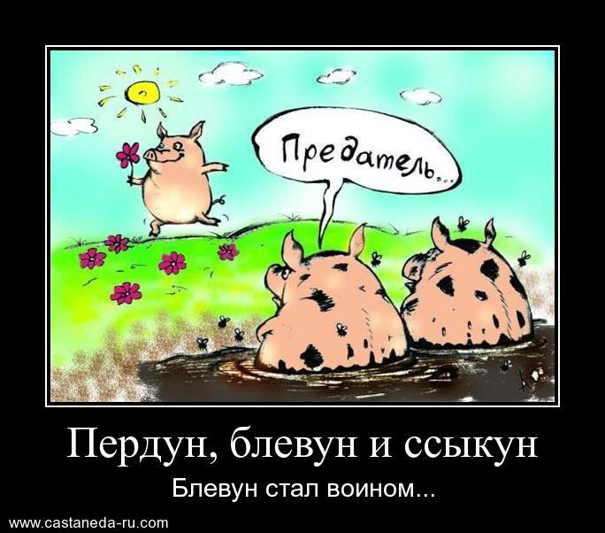 https://i4.imageban.ru/out/2021/07/17/05a089266be19b3a5a14e5e3b7ce7bd1.jpg