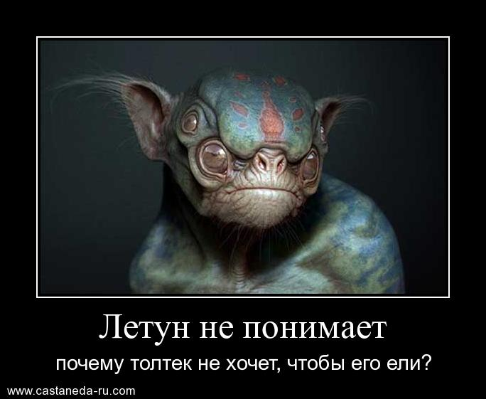 https://i4.imageban.ru/out/2021/07/17/07f30a91100ab8fd988ee0845ebadb2e.jpg