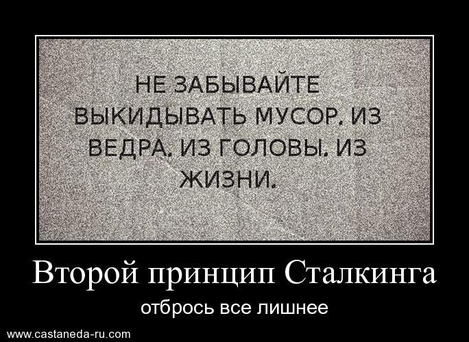 https://i4.imageban.ru/out/2021/07/17/102e265ffcbbc4fcd6f95b44e57f284b.jpg