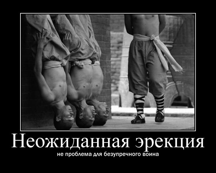 https://i4.imageban.ru/out/2021/07/17/1c820c8f67fe92ca3f6ec15ba436d115.jpg