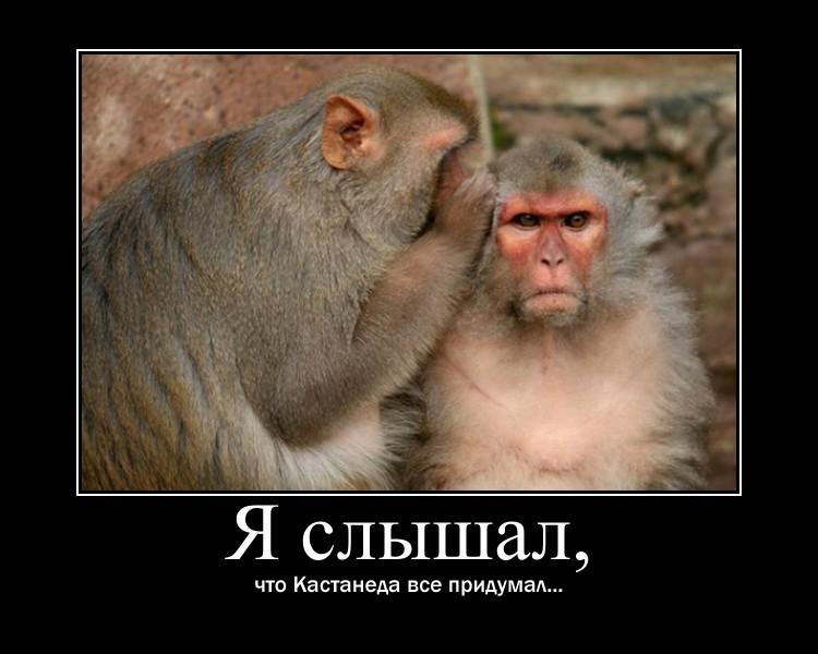 https://i4.imageban.ru/out/2021/07/17/26764d060424ba1ca58365bb7202df80.jpg