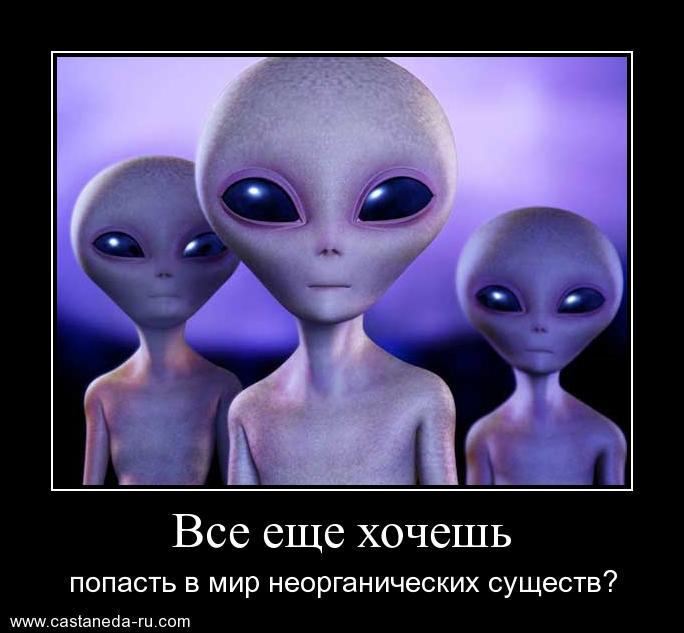 https://i4.imageban.ru/out/2021/07/17/2e06c712014f1e9c86438f84b540b101.jpg