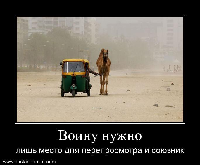 https://i4.imageban.ru/out/2021/07/17/2e45162eec5751a14033878b1798c549.jpg
