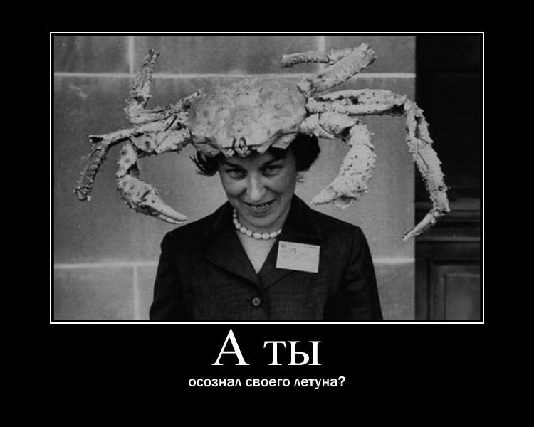 https://i4.imageban.ru/out/2021/07/17/3151b8f9edefec412ac2cbc165dc3f2c.jpg