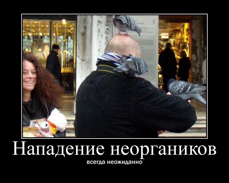 https://i4.imageban.ru/out/2021/07/17/362d56f4d02de98996bf08c86ff4ed0d.jpg
