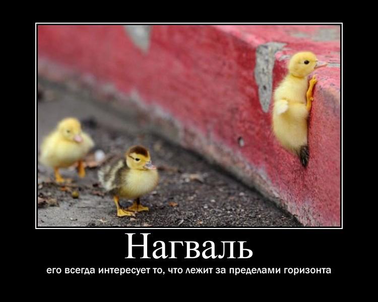 https://i4.imageban.ru/out/2021/07/17/4a1e7d2987c982e8ade1beef0fa9ae48.jpg