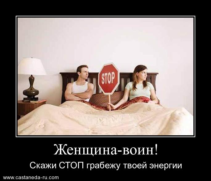 https://i4.imageban.ru/out/2021/07/17/527bcdf376668a373710783bea3ab58d.jpg