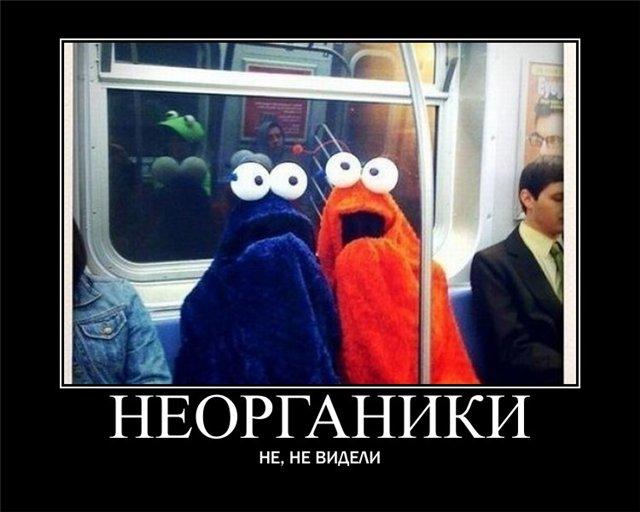 https://i4.imageban.ru/out/2021/07/17/5eccf3b0cd4f3e26818a4f93b9ebb342.jpg