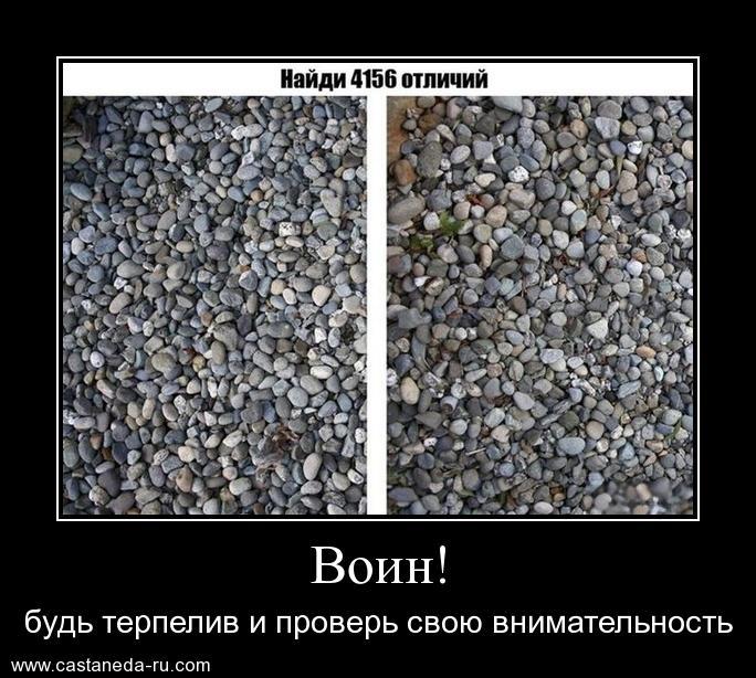 https://i4.imageban.ru/out/2021/07/17/5f2d8625a89385b685e579463ab00949.jpg
