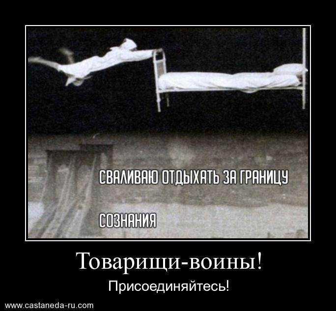 https://i4.imageban.ru/out/2021/07/17/6148522fa3ce99f611dc4b966c00f205.jpg