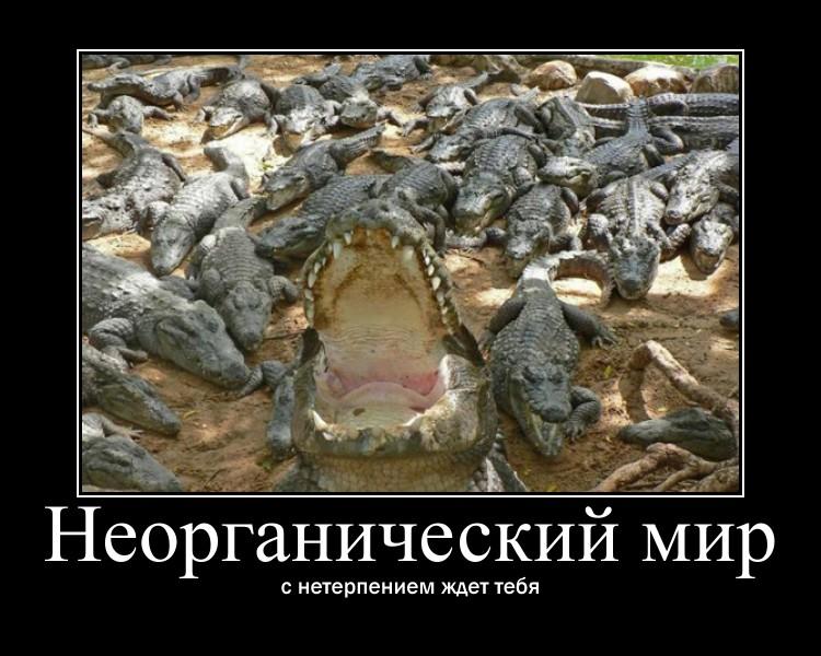 https://i4.imageban.ru/out/2021/07/17/6d8873ff5ba572c9050658aae17081b5.jpg
