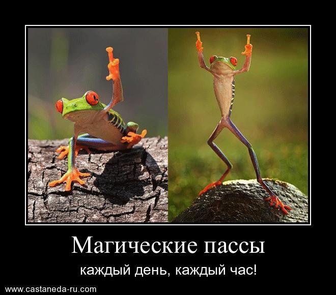 https://i4.imageban.ru/out/2021/07/17/6f891425fc83b1f74e541b5a81bff834.jpg