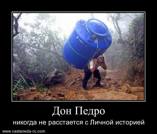 https://i4.imageban.ru/out/2021/07/17/6f8cb42a49d8afc5a92e866fc0fb7f90.jpg