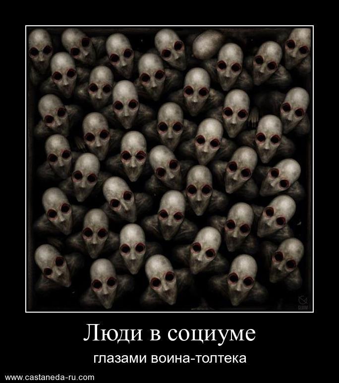 https://i4.imageban.ru/out/2021/07/17/7af8e4ae43a74d10466ebc196e074939.jpg