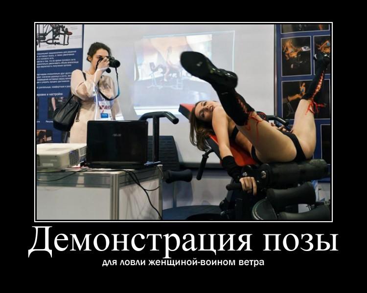 https://i4.imageban.ru/out/2021/07/17/7b16ed8c23835fc927d82499e89274bc.jpg