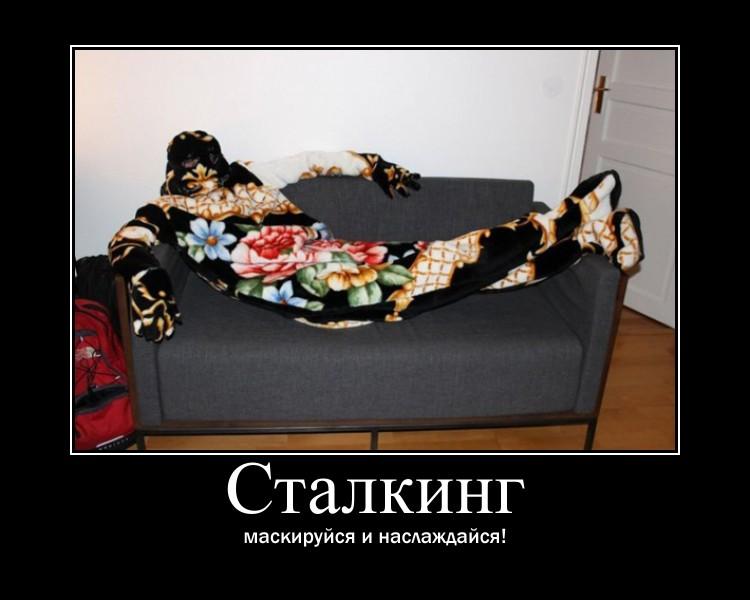 https://i4.imageban.ru/out/2021/07/17/820c04110f35e601ece7b22cfc8b8f58.jpg