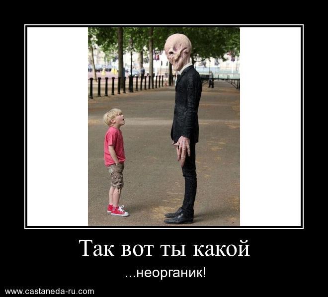 https://i4.imageban.ru/out/2021/07/17/874bbf0acfe9bb0f17680660e3a3315d.jpg