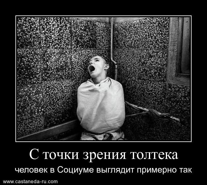 https://i4.imageban.ru/out/2021/07/17/94c8e2086ae49096351a91d82d49b944.jpg