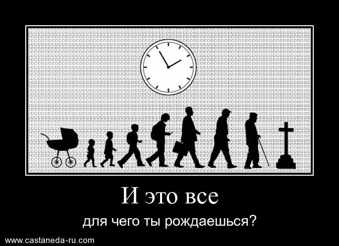 https://i4.imageban.ru/out/2021/07/17/975dc1952f52a92623117b1c777d4145.jpg