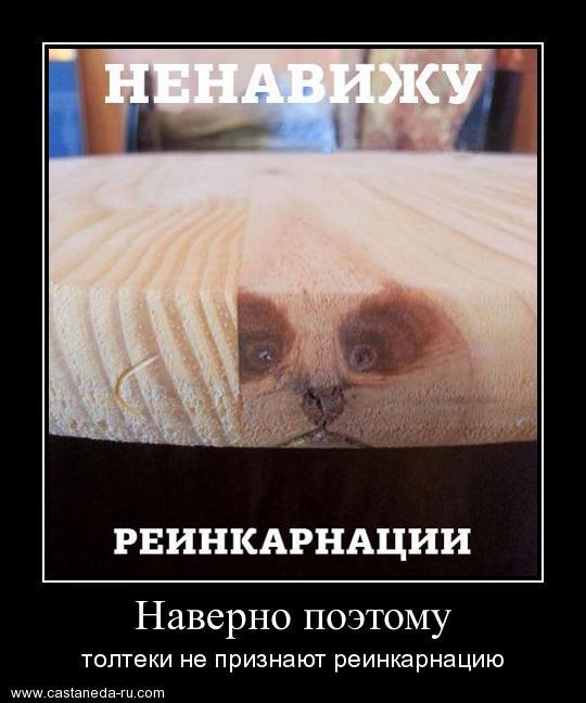 https://i4.imageban.ru/out/2021/07/17/99a5fc02c808a80c238e5de776f98464.jpg