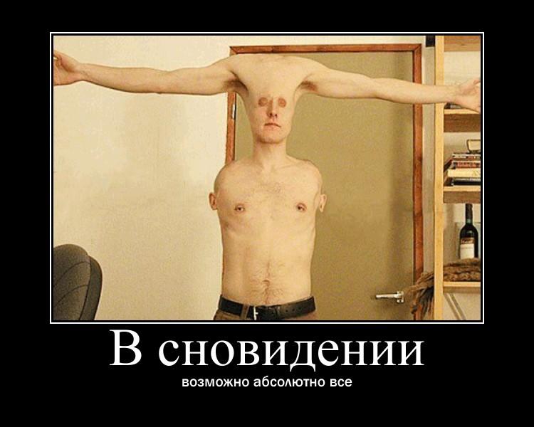 https://i4.imageban.ru/out/2021/07/17/99ac7a698553a5754f746683ccb07558.jpg