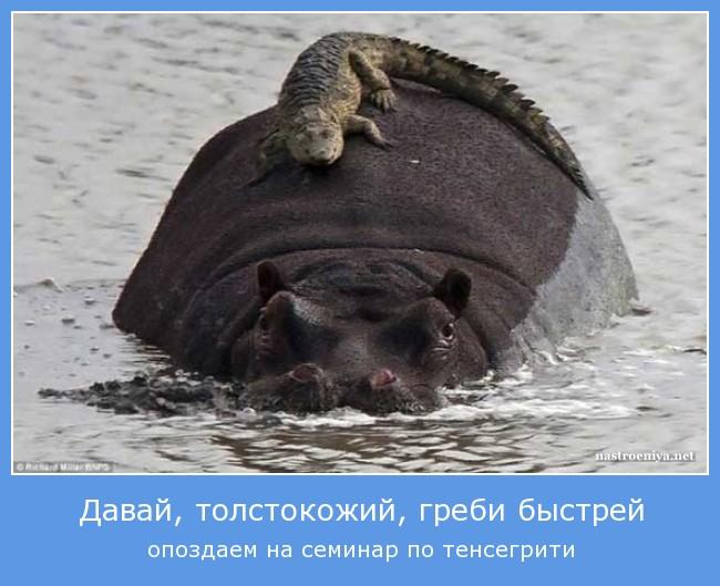 https://i4.imageban.ru/out/2021/07/17/9eaa69c9d9a6e08bcd9da12c412c0d69.jpg