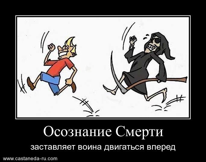 https://i4.imageban.ru/out/2021/07/17/9ef45f1cc2c895d30a36b22be726a70a.jpg
