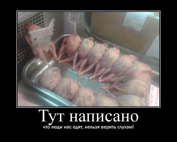 https://i4.imageban.ru/out/2021/07/17/a5779dad384caf230221657c1b5bd026.jpg
