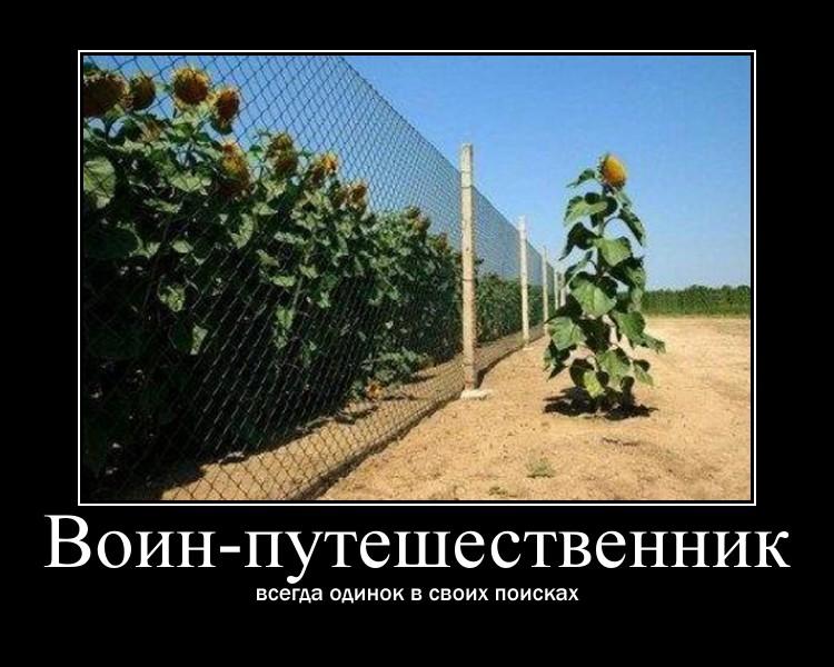 https://i4.imageban.ru/out/2021/07/17/a69d3c6f458b87bfd112d898c4209f30.jpg