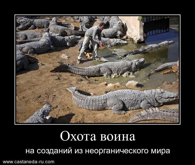 https://i4.imageban.ru/out/2021/07/17/a79d621ed31a454307307aeea8ffbbcc.jpg