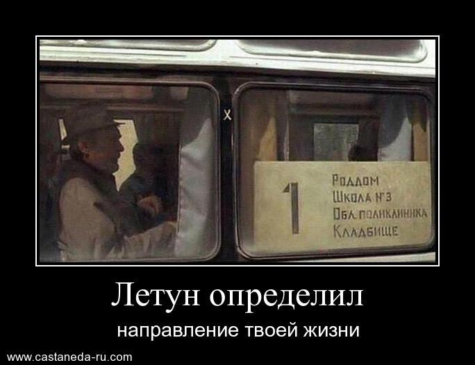 https://i4.imageban.ru/out/2021/07/17/a8b636f9579495f930097780860a97fb.jpg