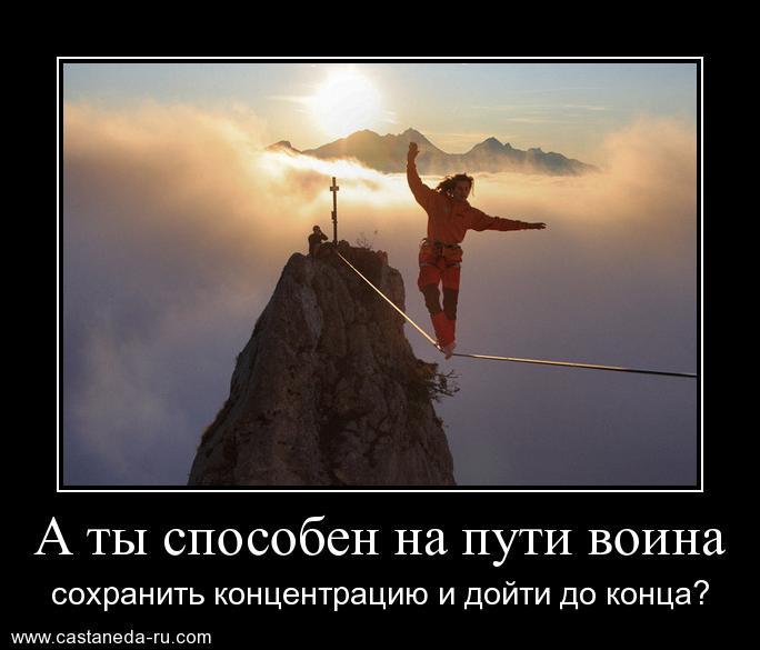 https://i4.imageban.ru/out/2021/07/17/acd0f890e04c51258b62c5056690ff71.jpg