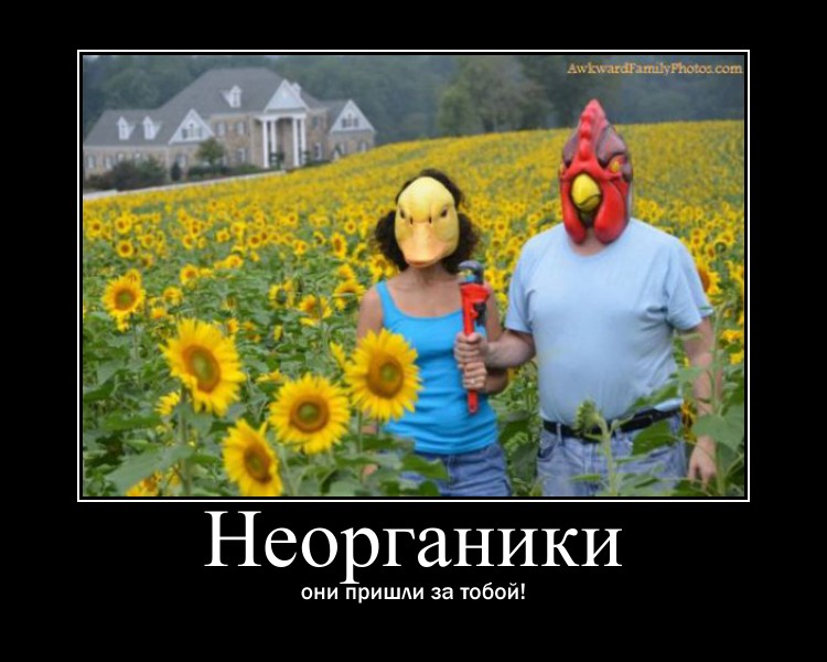 https://i4.imageban.ru/out/2021/07/17/ae5b14803392cb150e98454f4205adcd.jpg