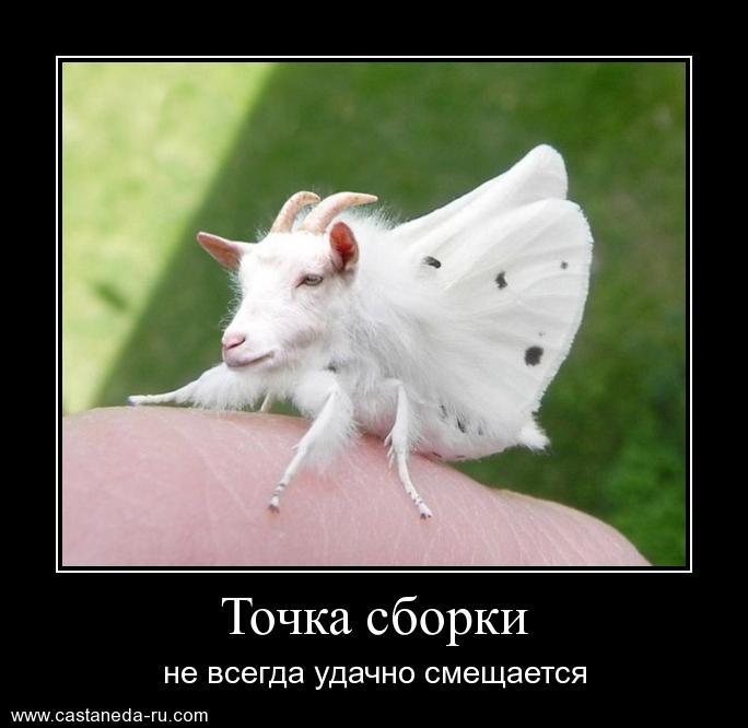 https://i4.imageban.ru/out/2021/07/17/b01326a75aad5997b0e7cabb6b1b448a.jpg