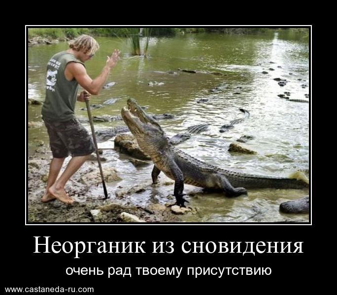 https://i4.imageban.ru/out/2021/07/17/bb97180090522a96f9c9e4a892a4c912.jpg