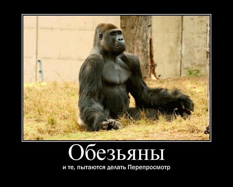 https://i4.imageban.ru/out/2021/07/17/bd1bab19f3fb01c897a53dbd63025379.jpg