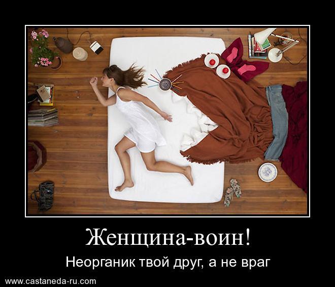 https://i4.imageban.ru/out/2021/07/17/c060b2be40179895528aecb25253ac4d.jpg