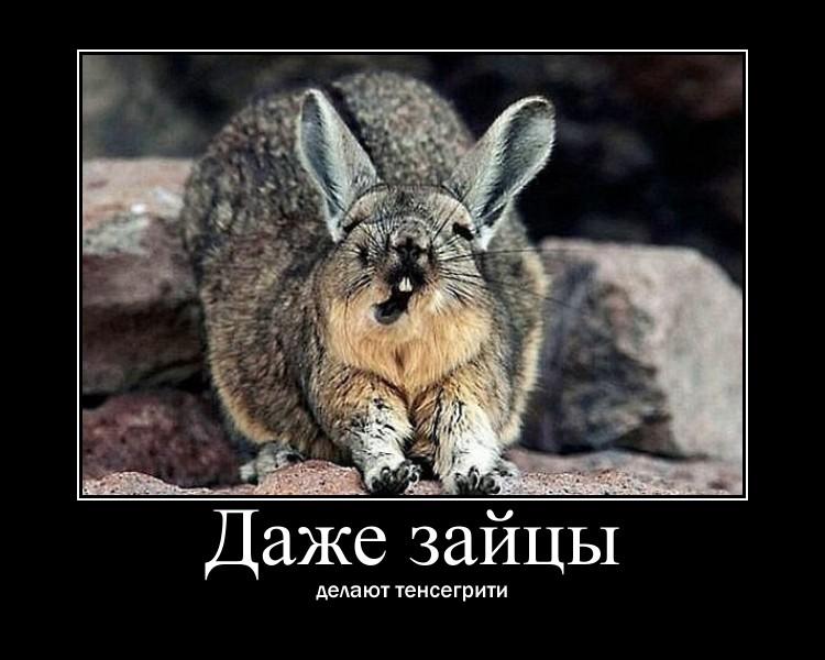 https://i4.imageban.ru/out/2021/07/17/c1d1de73a7c01fa5893d8248a3e2fdc9.jpg
