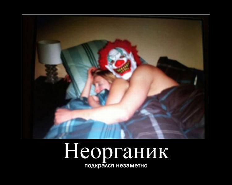 https://i4.imageban.ru/out/2021/07/17/c7db617c444599535d7468edf7496636.jpg