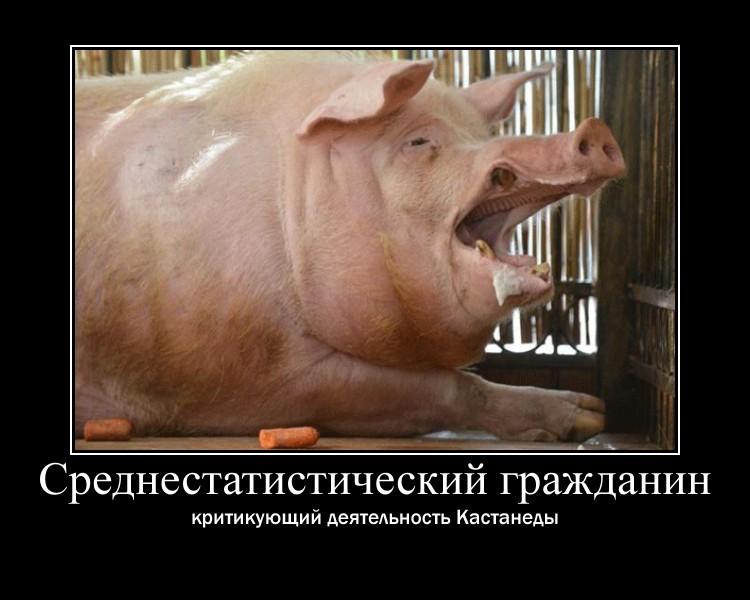 https://i4.imageban.ru/out/2021/07/17/ce2a61bc11e3e59c63e121701a0c7223.jpg