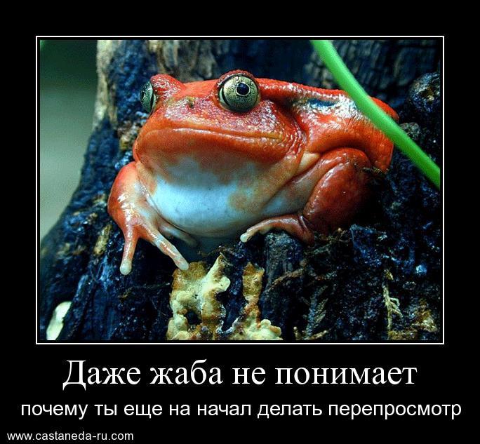 https://i4.imageban.ru/out/2021/07/17/d2555fc8ec23db27d5326c01afbf5241.jpg