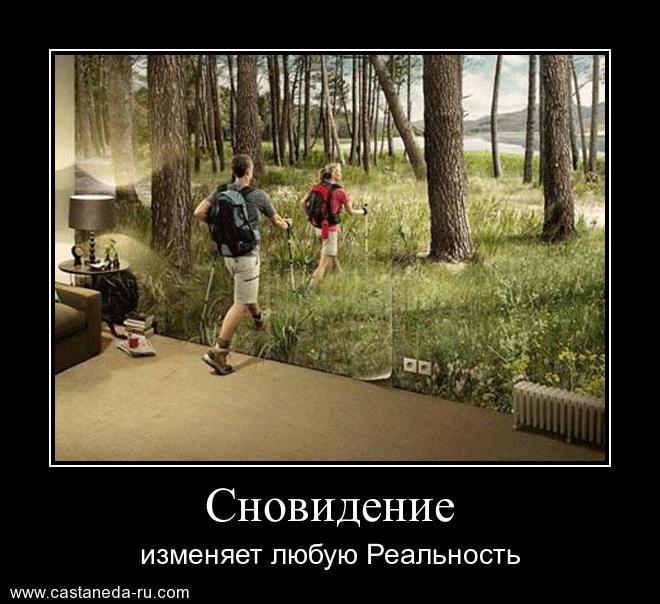 https://i4.imageban.ru/out/2021/07/17/da4a8faa1106e3d66185d3dca55a95fc.jpg