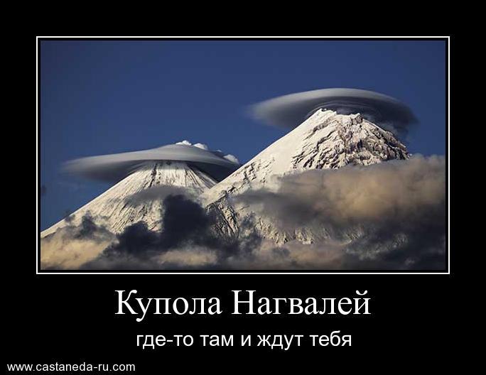 https://i4.imageban.ru/out/2021/07/17/debc014e845c31f6e1fc9090917909f0.jpg