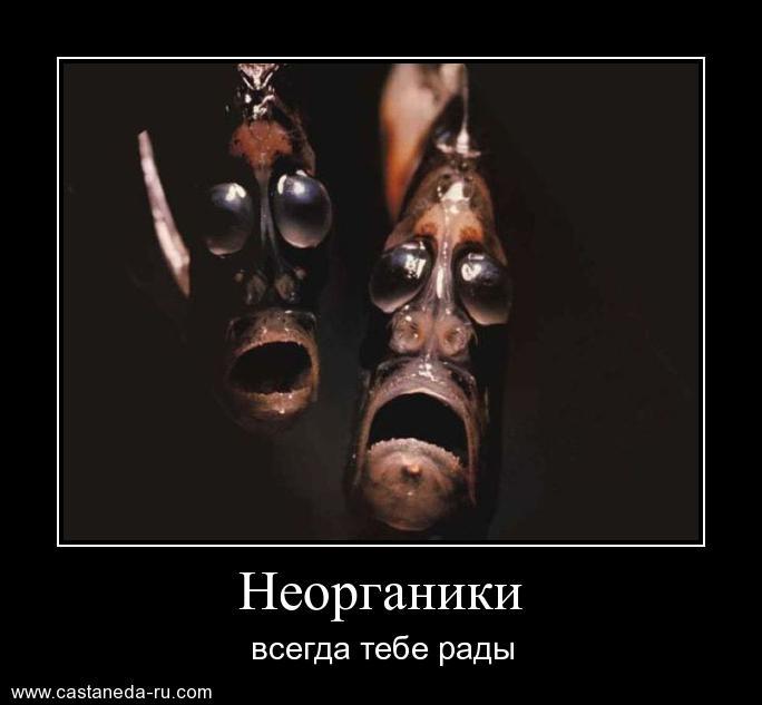 https://i4.imageban.ru/out/2021/07/17/f13a5634c4e405208814d3ccb93ff553.jpg