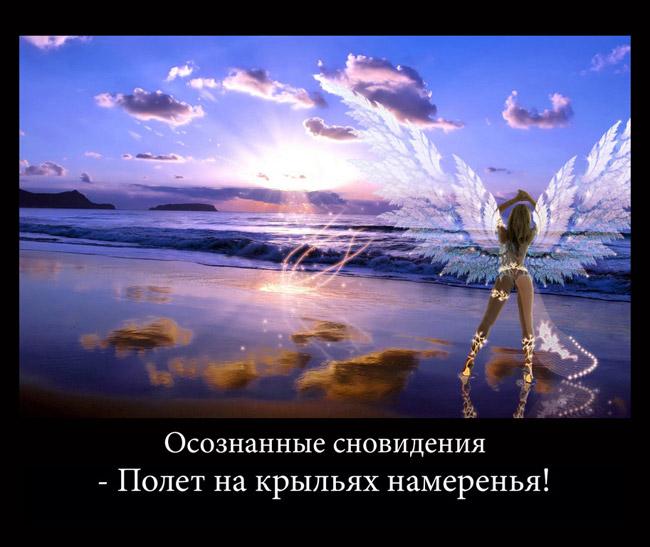 https://i4.imageban.ru/out/2021/07/17/f245daf216c1ea4c09b639a16286355c.jpg