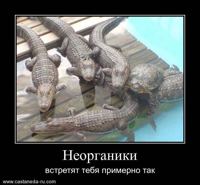 https://i4.imageban.ru/out/2021/07/17/fb91119e548db741685a7edf62a5a88b.jpg