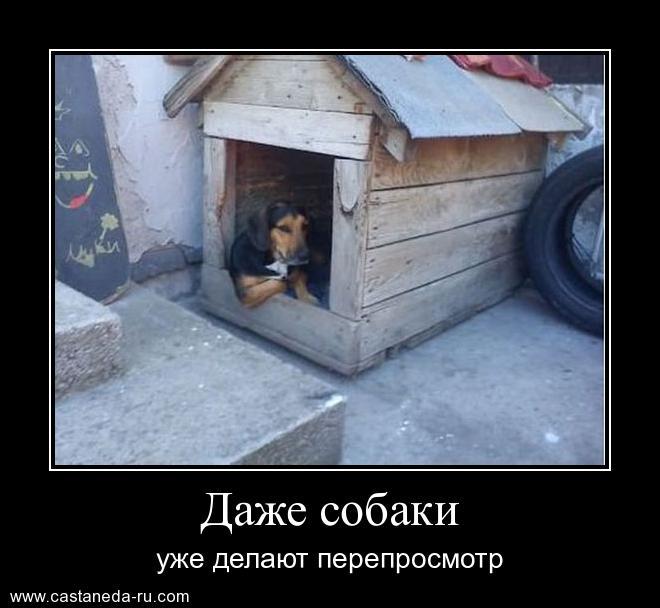 https://i4.imageban.ru/out/2021/07/17/fba50bf2d4f704298ed99a7a1d59f88c.jpg