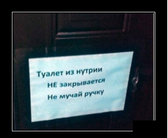 https://i4.imageban.ru/out/2021/07/24/01af80760472e823a67cc61a78079bed.jpg