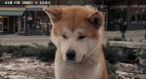 Хатико: Самый верный друг / Hachiko (Hachi): A Dog's Story (2009) BDRip 1080p