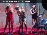 http://i4.imageban.ru/thumbs/2011.04.23/2ef4a7c5897b4094fb5d5782dcec3f6e.jpg